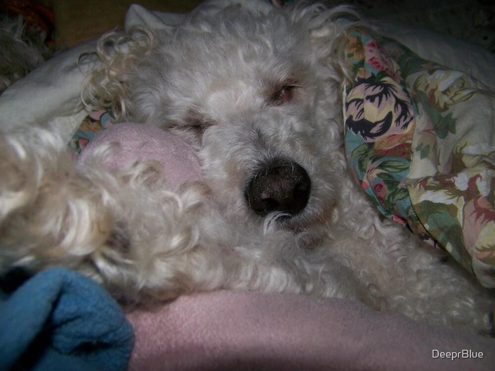 Sleep My Sweet...Soon All Will Be Well by DeeprBlue