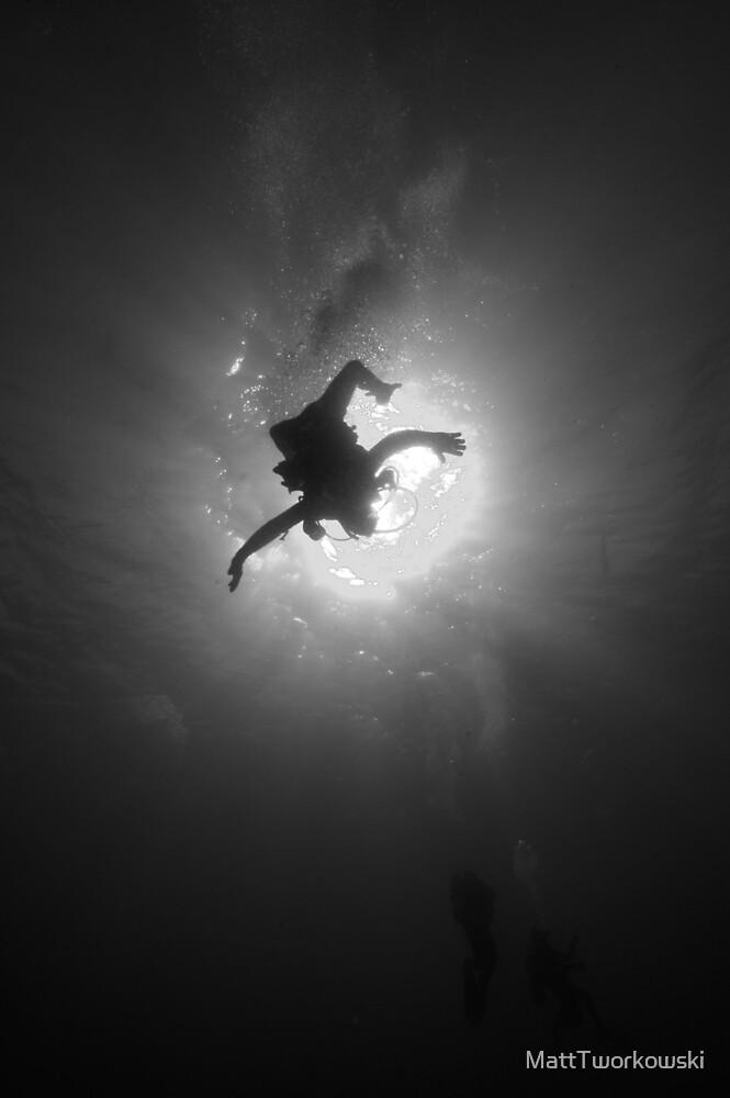 Embracing The Sun by MattTworkowski