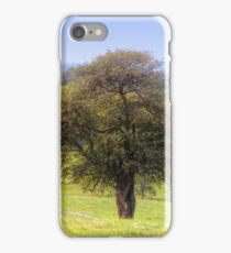 Tree Down The Hill iPhone Case/Skin