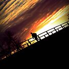 Runner On the Bridge by Samantha Perry
