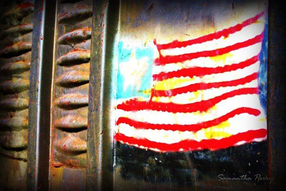Urban America by Samantha Perry