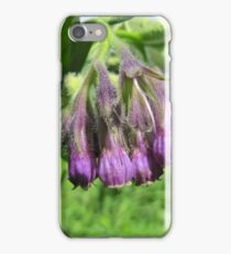 Symphytum officinale iPhone Case/Skin