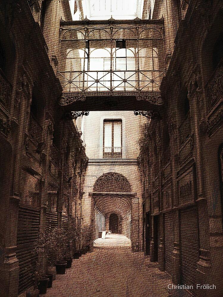 Barcelona Old City 4 by Christian  Frölich