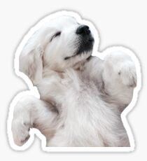 Sleeping Puppy Sticker