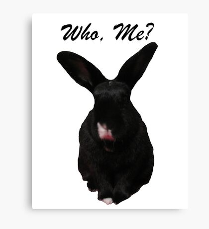 Who, Me? Canvas Print