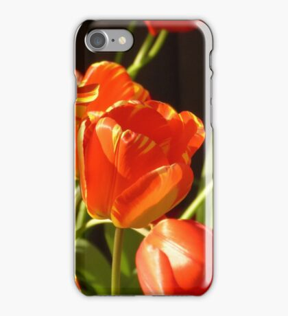 Golden tulips iPhone Case/Skin