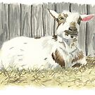 Goat in the Sunshine - Watercolor by skidgelstudios