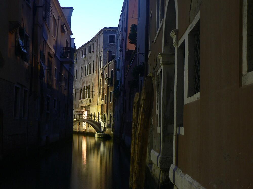 Illuminated canal, Venice by helmut