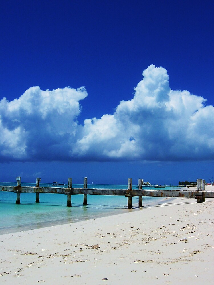 Beach View by Holls