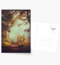silent forest Postcards