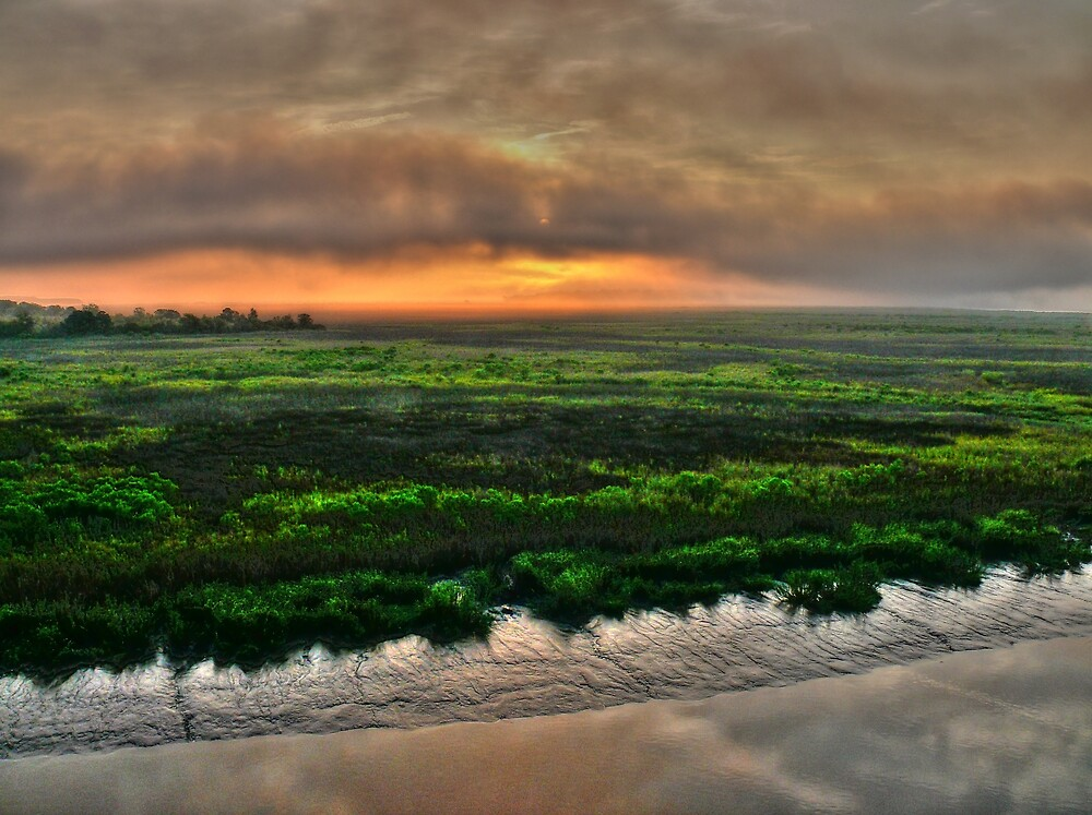 A Textured Marsh at Daybreak by John E Adams