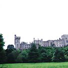 Lismore Castle, throu the trees.  by SeptimaK