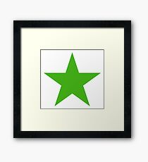 GREEN, STAR, Environment, Environmentalist, Ecology, Eco, Nature, Green, Framed Print