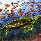 Green Sea Turtle by Randy Sprout