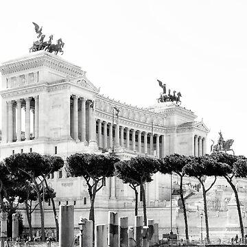 Piazza Venezia - Rome - Italy by novopics