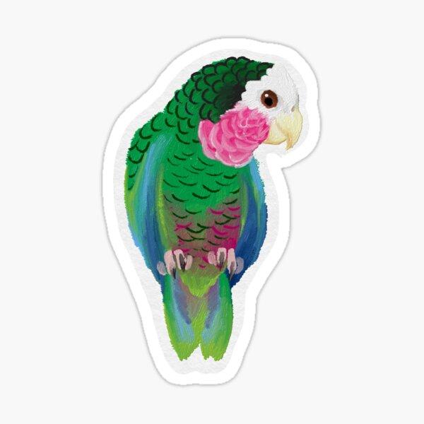 Cuban Amazon Parrot (Amazona Leucocephala) Sticker