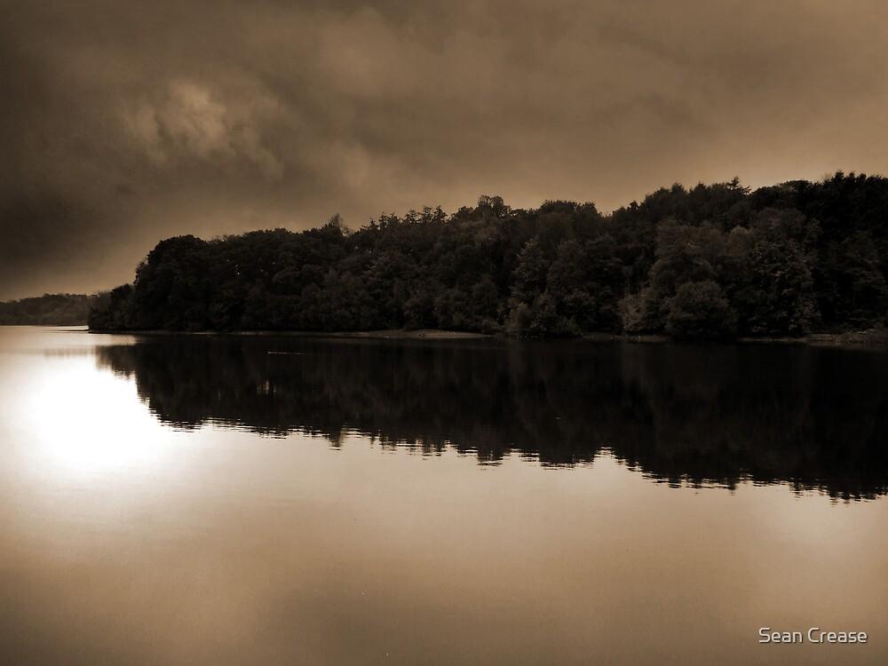 Still Water by Sean Crease