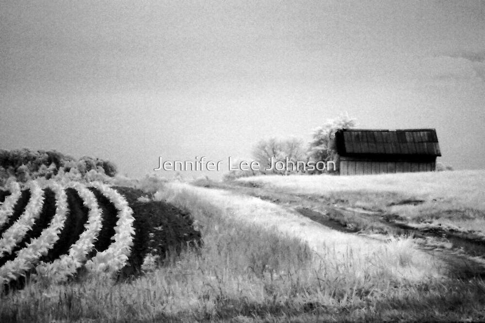 Untitled by Jennifer Lee Johnson