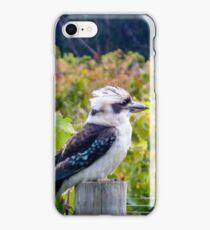 Kooky kookaburra iPhone Case/Skin