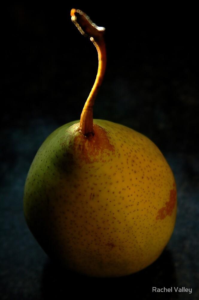 Pear by Rachel Valley