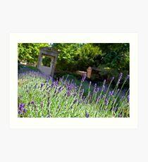 A Wiltshire Country Garden Art Print