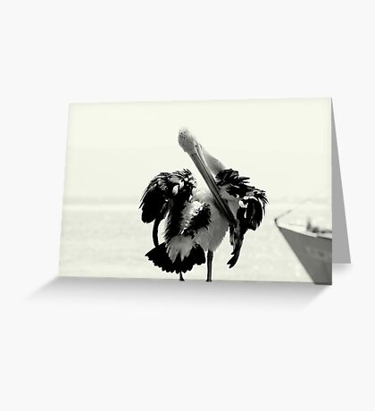 Pelican Portrait In Black And White Greeting Card