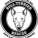 Save a Bully, Find a Friend by BTRI