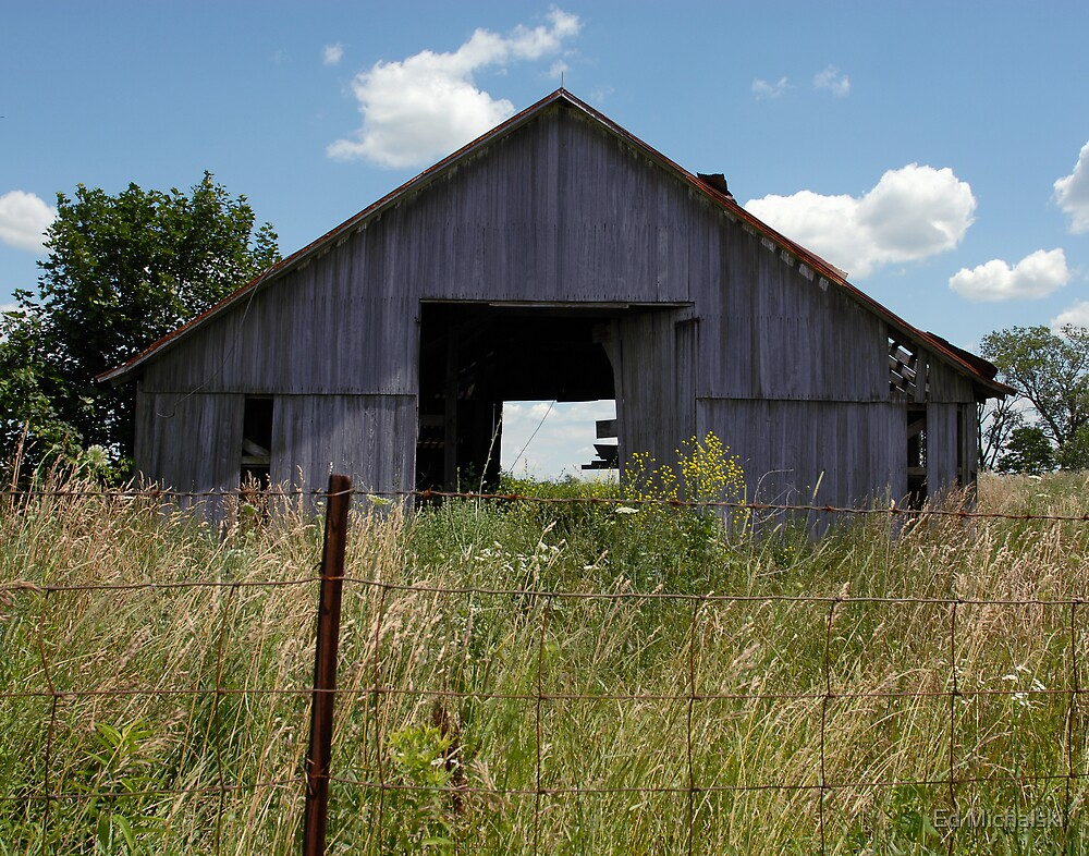 Old Barn by Ed Michalski