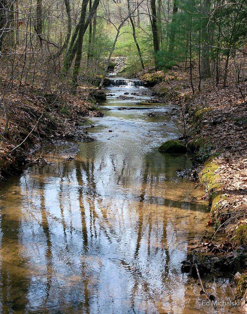 stream reflections by Ed Michalski