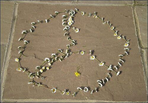 CND Daisy chain by MoonShadowWolf