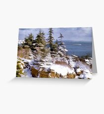 Snow in Acadia National Park Maine Greeting Card