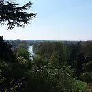 Richmond Hill by Steven Mace