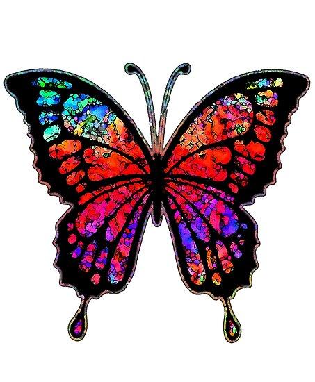 Psychedelischer Schmetterling von Bronzarino