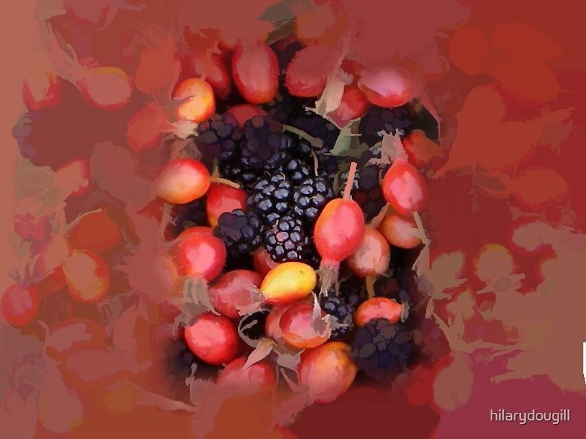 summer fruits by hilarydougill