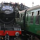 Flying Scotsman @ Bluebell Railway by mdench