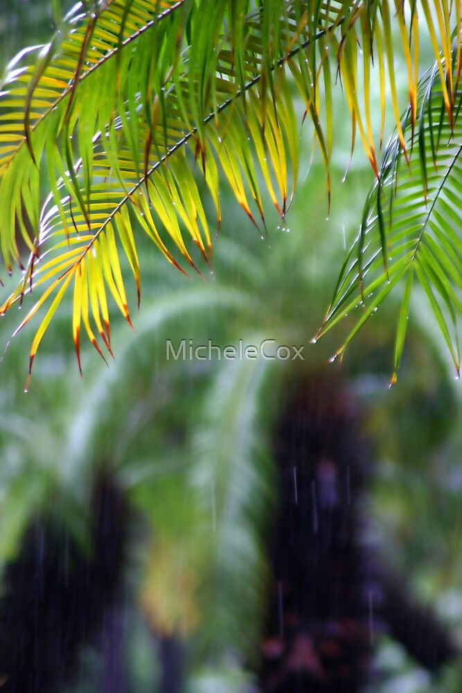 Palms by MicheleCox