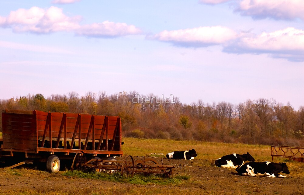 Country Life by cherylc1