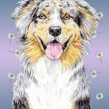 Australian Shepherd Dog to Love by didielicious