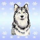 Alaskan Malamute to Love by didielicious