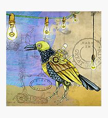 Steampunk bird Photographic Print