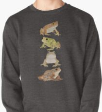 Toads Pullover