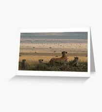 Surveying The Plains Greeting Card