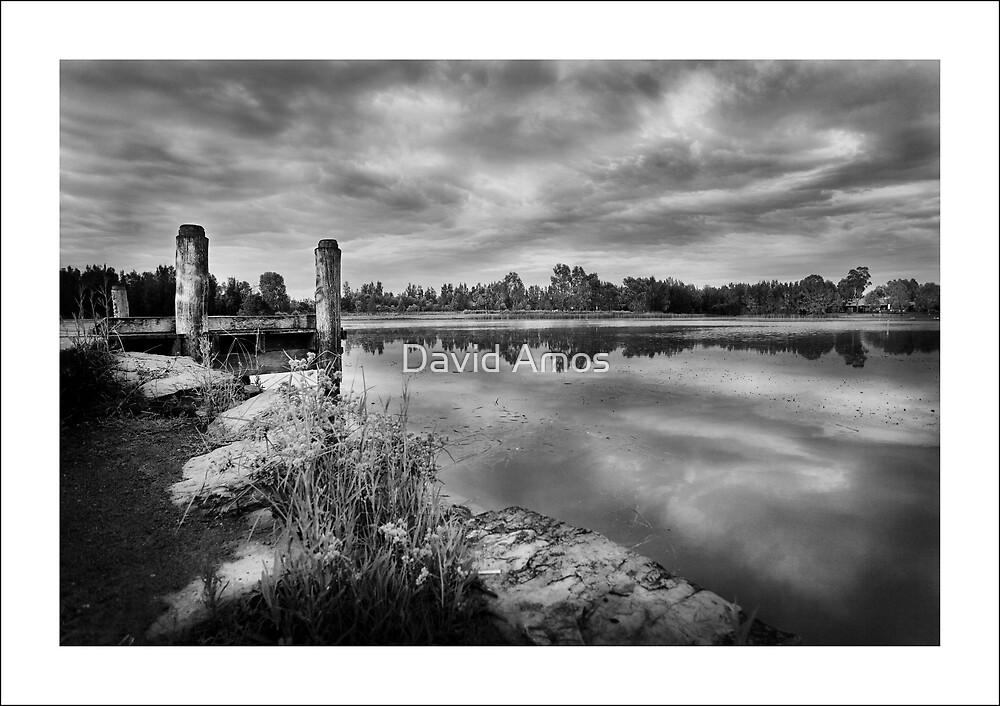Woodcroft Lake by David Amos