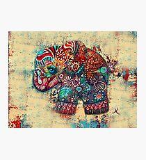 Vintage Elefant Fotodruck