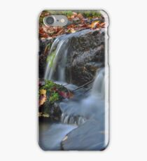 Crimson waters of vivid fall colors iPhone Case/Skin