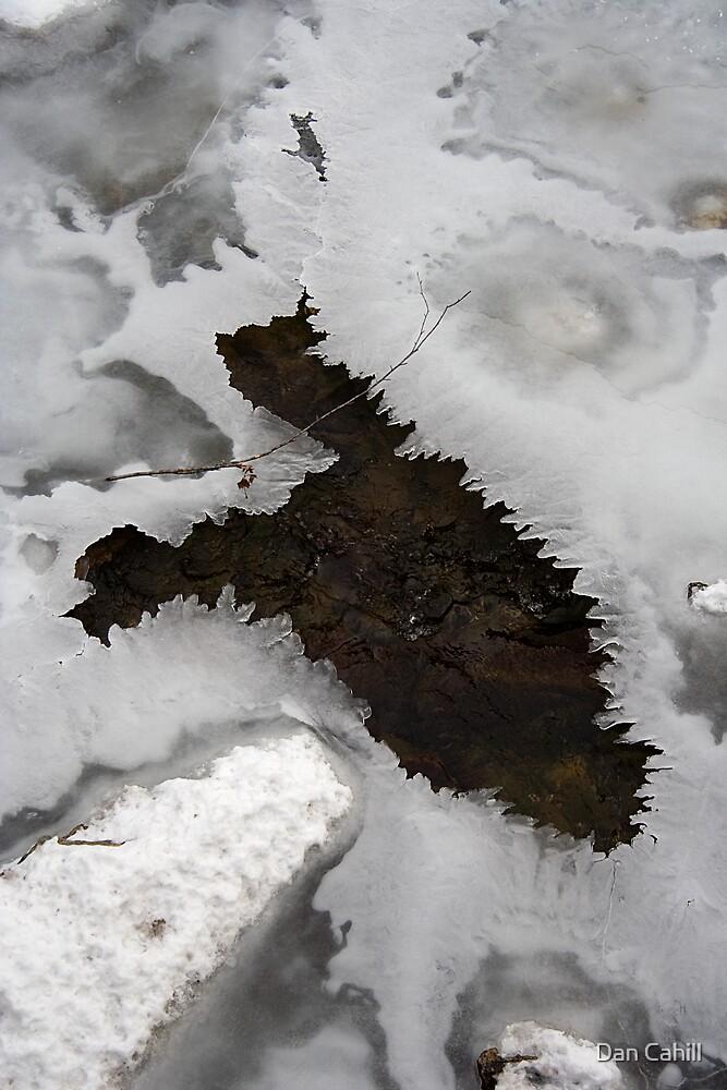 Ice Amoeba by Dan Cahill