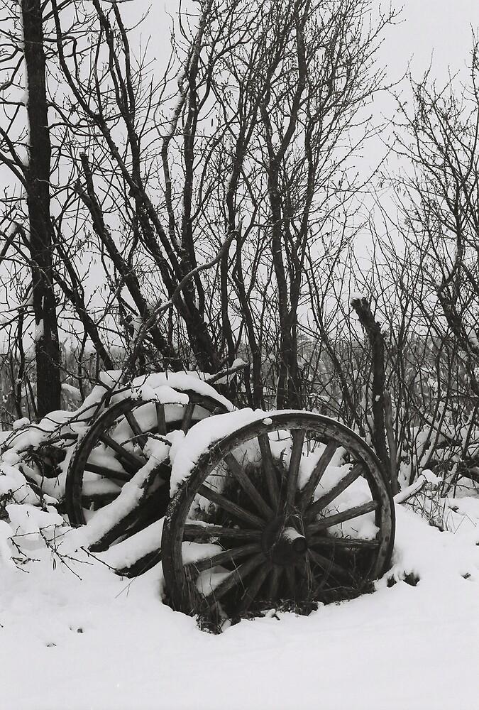 Winter by Mark Mcdonough