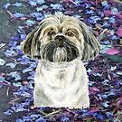 Lhasa Apso to Love by didielicious
