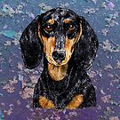 Dachshund to Love and Adore by didielicious