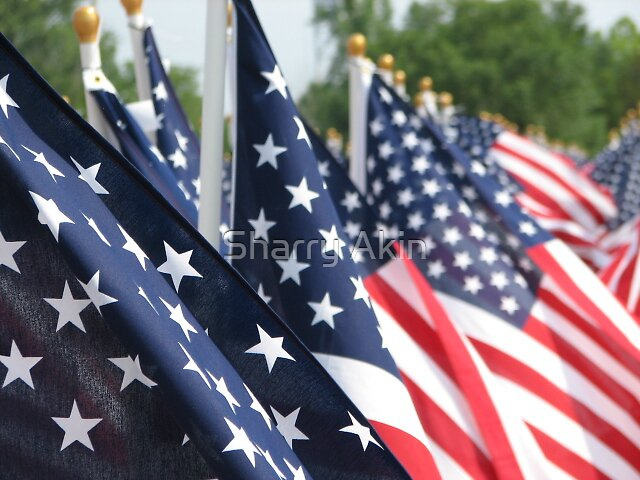 Memorial Day  by Sharry Akin